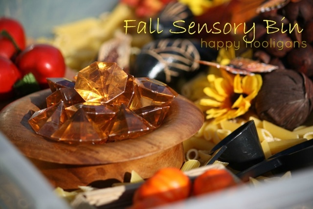 Fall Sensory Bin by Happy Hooligans