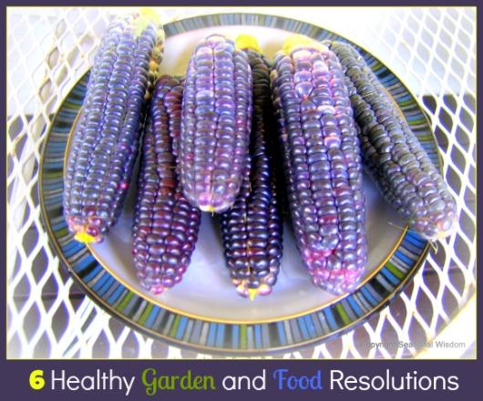 6 healthy garden and food resolutions by seasonal wisdom