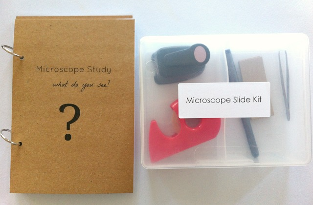 DIY Microscope Slide Kit for kids by How We MontessoriDIY Microscope Slide Kit for kids by How We Montessori