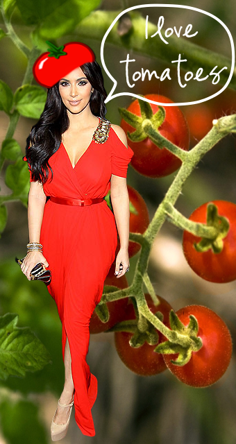 Kim Kardashian's Tomatoes: 5 Thoughts on Blogging by NWEdibles