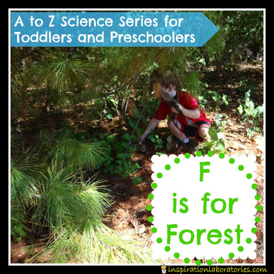 F is for Forest by Inspiration Laboratories