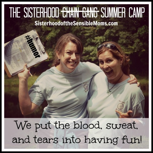 The Sensible Sisterhood Summer Camp by Sisterhood Of The Sensible Mom