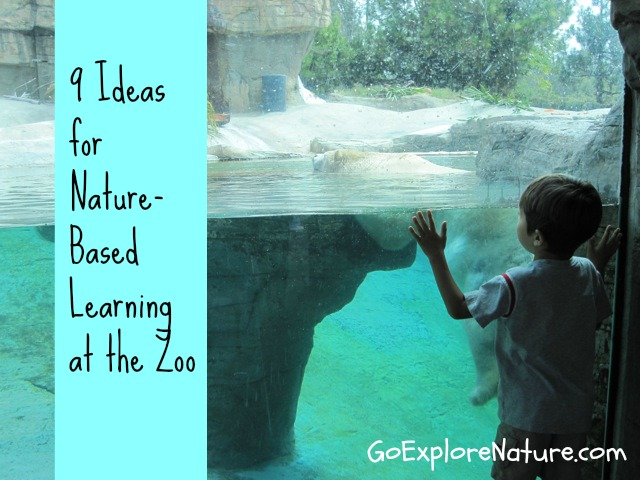 9 Ideas for Nature-Based Learning at the Zoo by Go Explore Nature