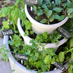 DIY Stacked Herb Garden by Fancy Frugal Life