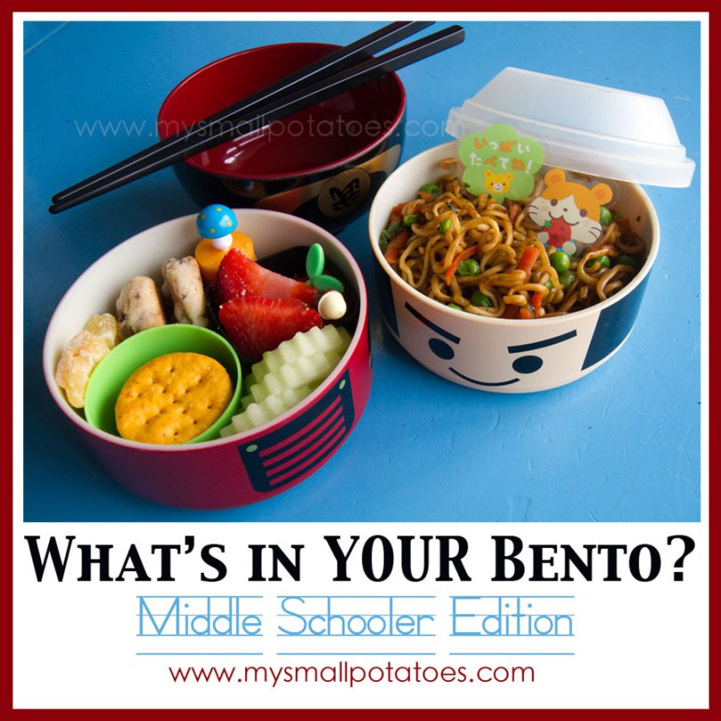 What's In YOUR Bento? Middle Schooler Edition…by Small Potatoes