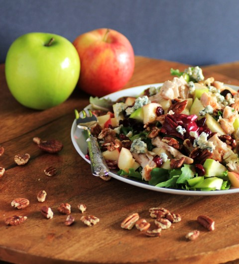 Copycat Wendy's Apple Pecan Chicken Salad by Noshing with the Nolands