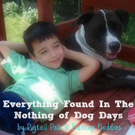 Everything Found In The Nothing of Dog Days by Pigtail Pals & Ballcap Buddies