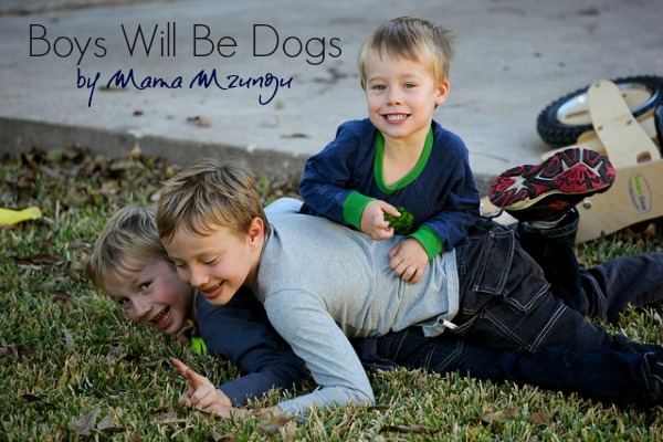 Boys Will Be Dogs: Is Play Fighting Actually Good For Our Kids? by Mama Mzungu