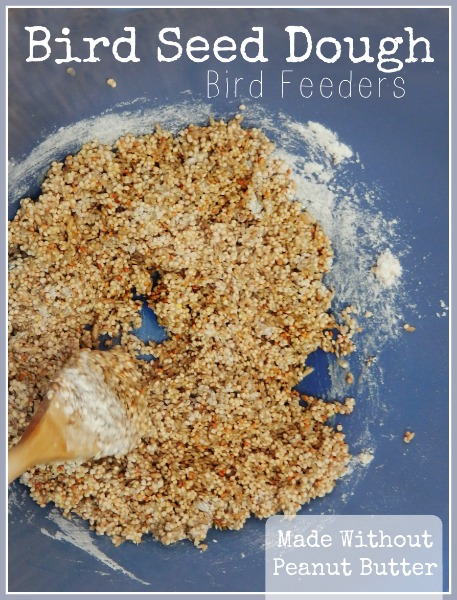 Bird Seed Dough Bird Feeders - peanut free