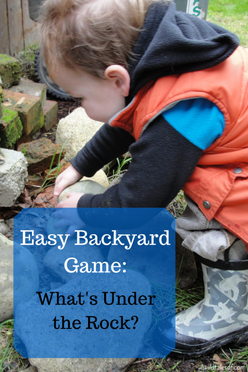 Easy Backyard Game: What's Under the Rock by Wild Tales Of