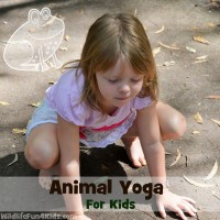 Playroom Animal Yoga 200x200