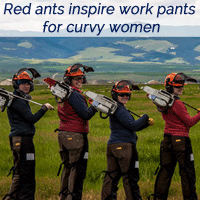 red-ants