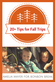 Grab the kids, get in the car and take off this weekend. These tip for fall trips for families will get you out the door!
