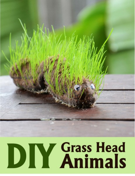Animal Grass Heads for Kids