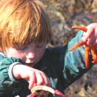 Why I Love Tide Pooling with my Kids by Ground Truth Trekking