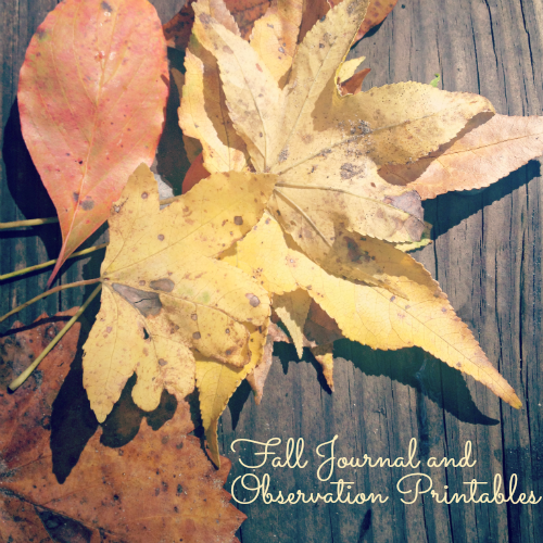 Fall Journal and Observation Sheet for Kids