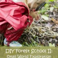 DIY Forest School II: Small World Exploration by Rain or Shine Mamma