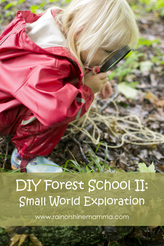 DIY Forest School II: Small World Exploration by Rain or Shine Mamma