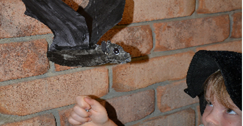 Halloween: Make a Flapping Bat Decoration