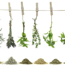 DIY Herbal Teas: A Tutorial