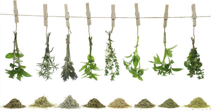 DIY Herbal Teas: A Tutorial
