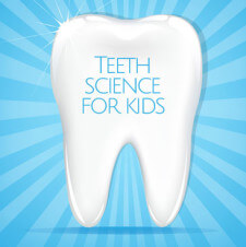 Teeth Science for Kids – Why do we need to take care of our teeth