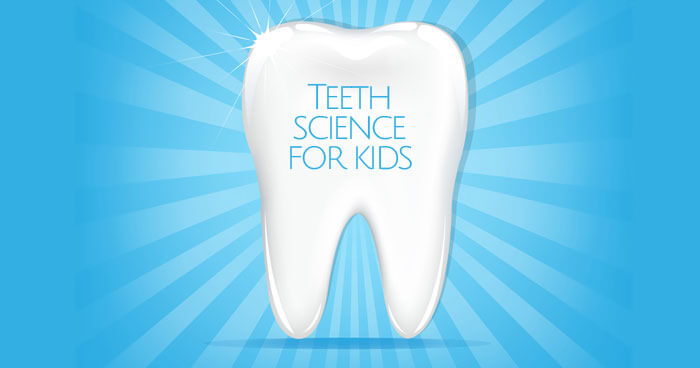 A great science activity to help children understand the importance of taking care of their teeth