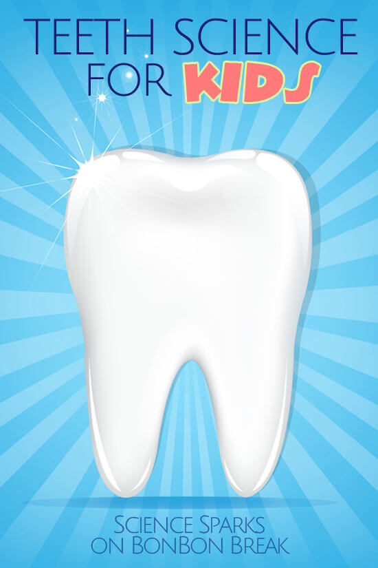This easy science activity will help illustrate the importance of taking care of your teeth.