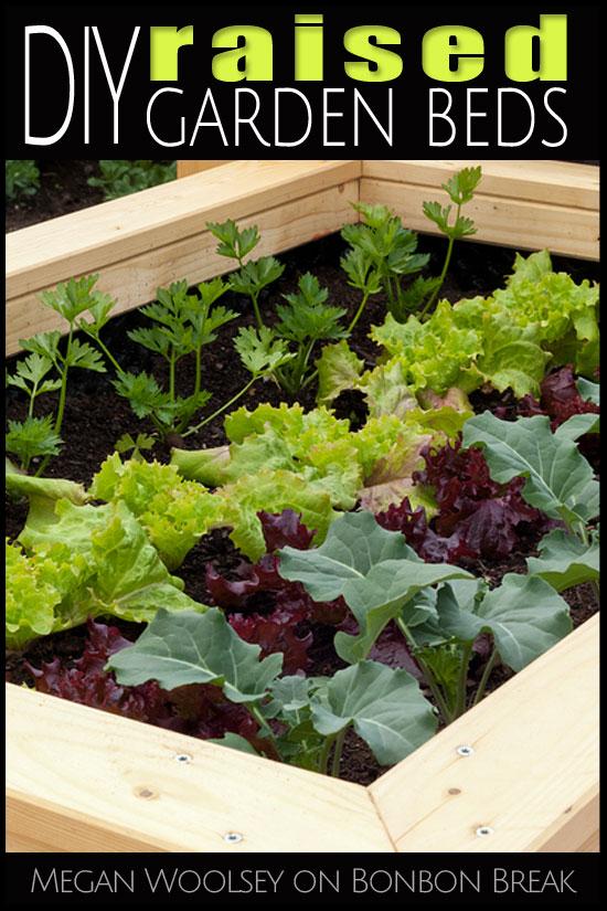 A DIY Raised Garden Beds