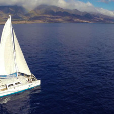 Maui Family Style: Whale Watching with Pacific Whale Foundation