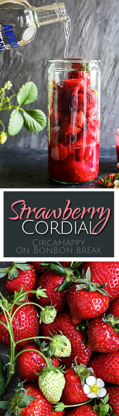 DIY Strawberry Cordial lets you capture the goodness of fresh, seasonal strawberries to help you enjoy their fresh, sweet flavor when they disappear.