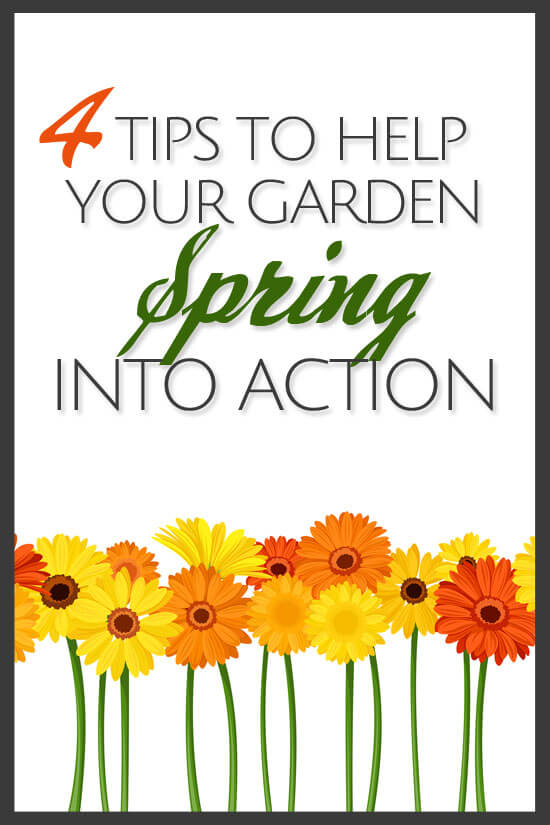 4 Tips to Help Your Garden Spring Into Action | BonBon Break