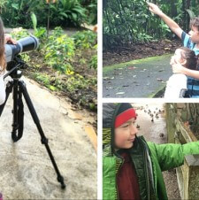 Tips for Birding with Young Kids