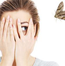What My Fear of Moths Taught Me About Parenting