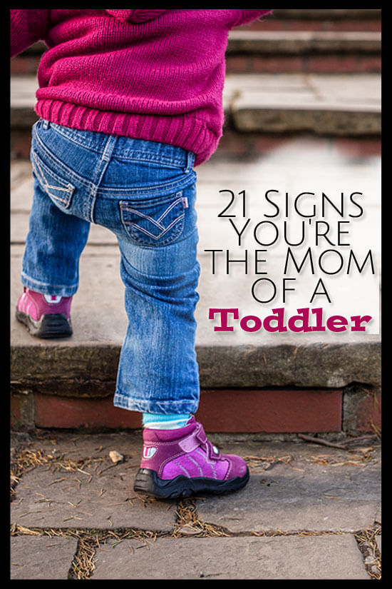 Being a toddler is more about their personality than their age! Here are 21 signs you're the mom of a toddler!