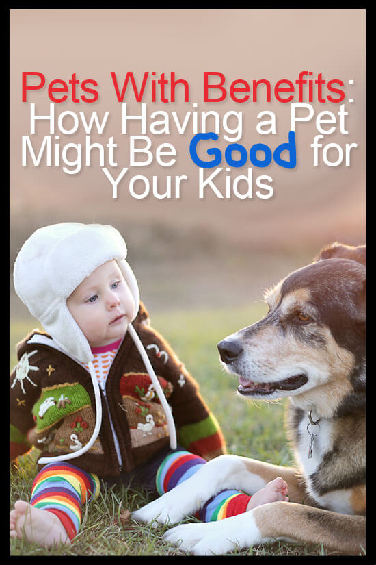 There are lots of reasons why you shouldn't have pets if you have a baby or small child at home. However, there are studies that have shown health benefits of owning a pet.
