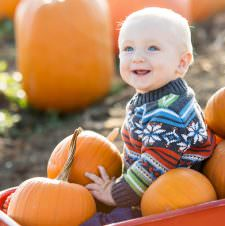Tips for Great Pumpkin Patch Photos