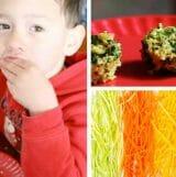 quinoa veggie bite snacks